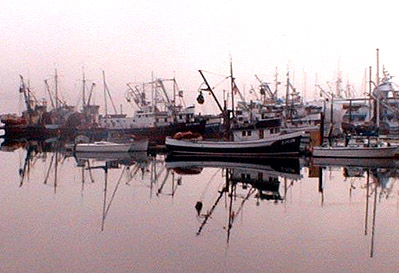 Gig Harbor Fishing Fleet in the Fog